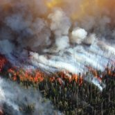 El INTA desarrolló un sistema que estima la probabilidad de un incendio forestal
